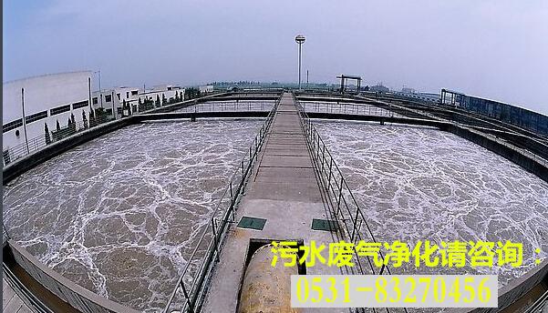 污水产生的废气需要经过净化后才能达标排放