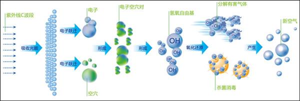 有机废气处理合作厂家工艺流程图